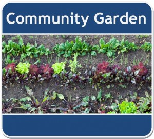 Community Garden Webpage