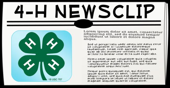 Newsclip Icon